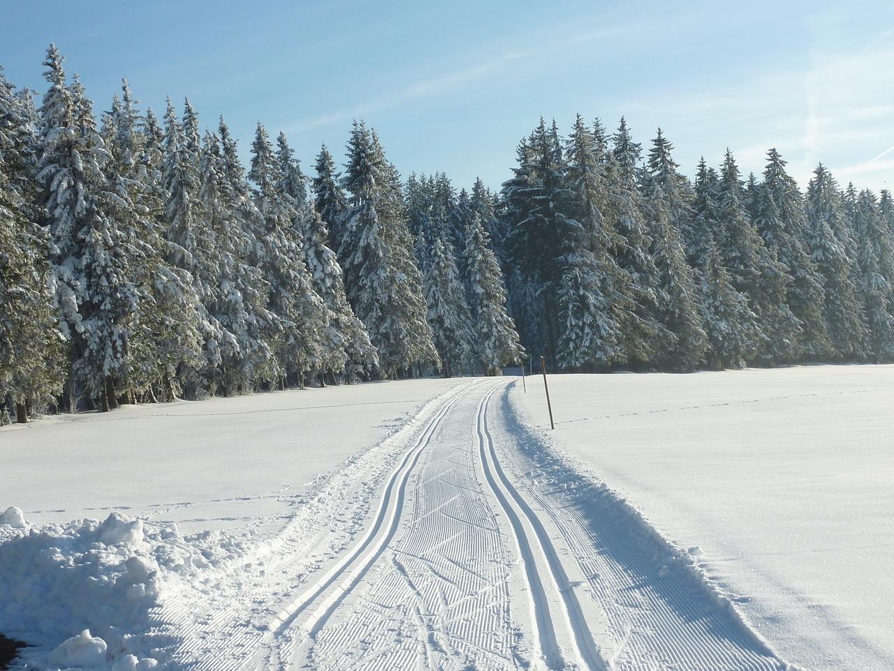 Winter Auf Dem Oberhofenhof Urlaub Im Schwarzwald Bei Titisee